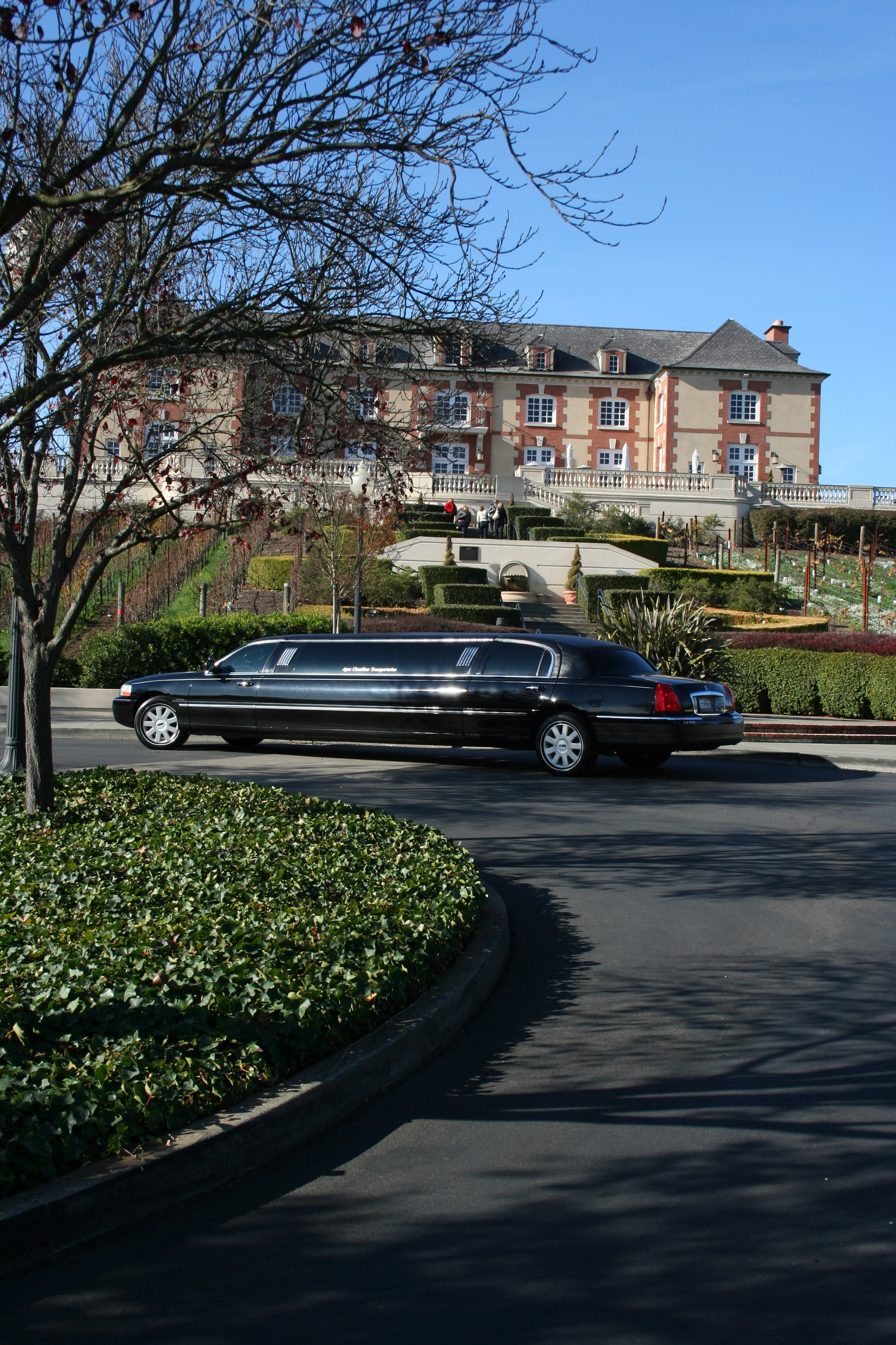 Domaine Carneros Winery LimousineTour